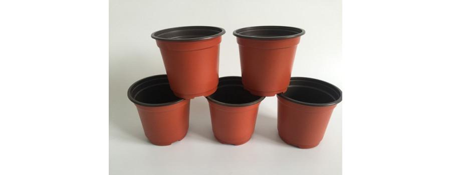 Alle planten in container, geen blote wortels meer